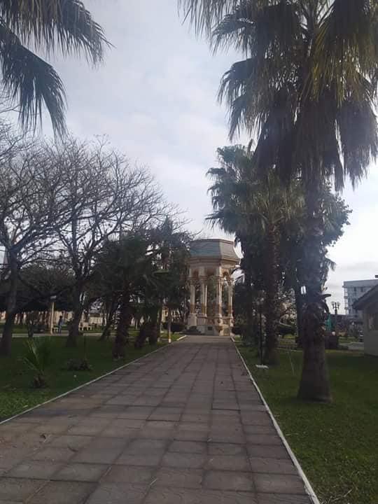 SECRETARIA DE OBRAS REALIZA PODA DE ÁRVORES E LIMPEZA NAS RUAS