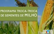 ESTÃO ABERTAS AS INSCRIÇÕES PARA O PROGRAMA TROCA-TROCA DE SEMENTES DE MILHO SAFRA 2020/2021