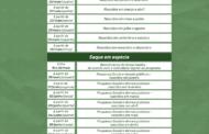 MINISTÉRIO DA CIDADANIA DIVULGOU O CALENDÁRIO ATUALIZADO DA 2ª PARCELA DO AUXÍLIO EMERGENCIAL